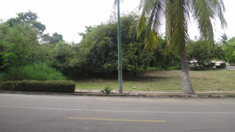0000 Calle Gaviotas, Lote Gaviotas V Illa I, Riviera Nayarit, Na