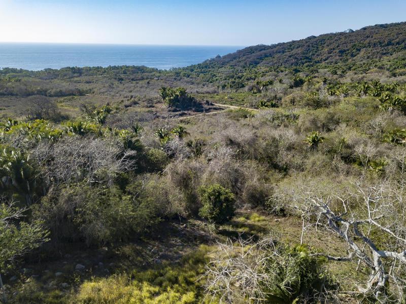 1380 Camino A Imanta Resort, La Joya, Riviera Nayarit, Na
