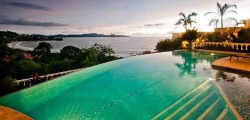 Bougainvillea cr 10