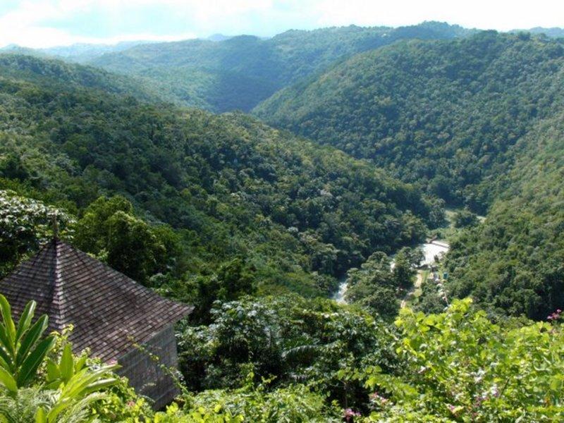 Destiny jamaica villas01