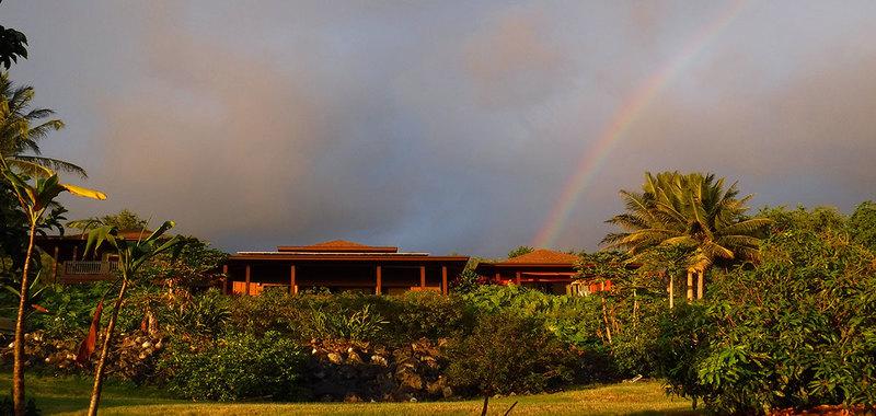Hawaii dolphin spirit house 31