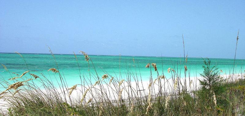 Emerald shores 22