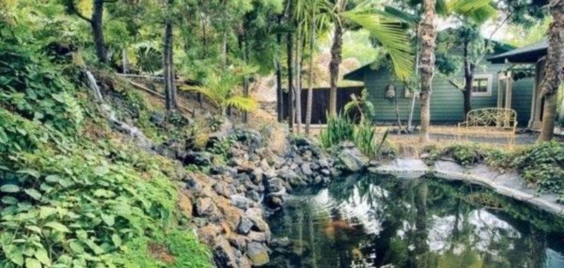Hawaii kbay estate 22