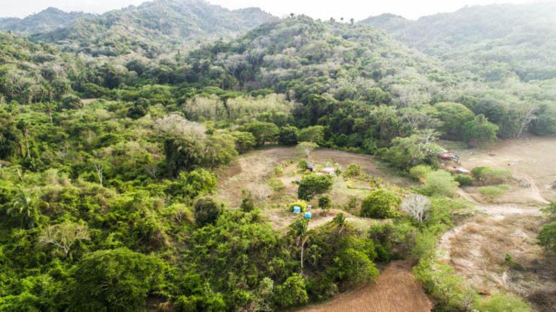 Rancho Bougainvillea