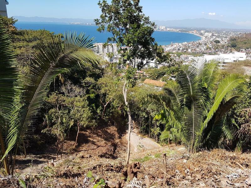 S/N Gladiolas, Lote Amapas, Puerto Vallarta, Ja